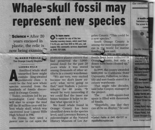 Whale Scale New Species, OC Register